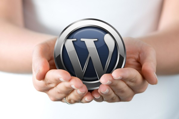OnlineForLess - 7 big reasons to use WordPress for your next web project